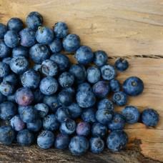 Bleuets de Corymbe (congelés)